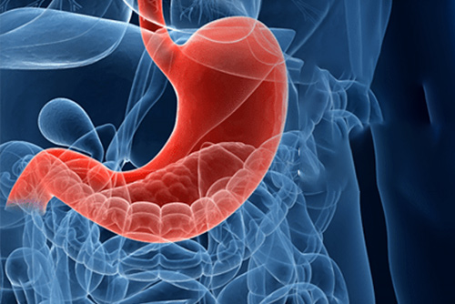 Department of Bariatric Surgery