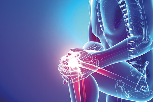Orthopaedic, Joint replacement & Sports Medicine